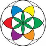 iHempWA logo tidyHQ